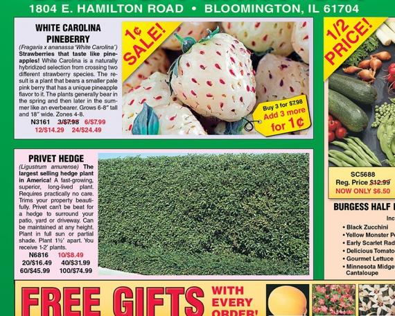 Burgess Seed & Plant Company