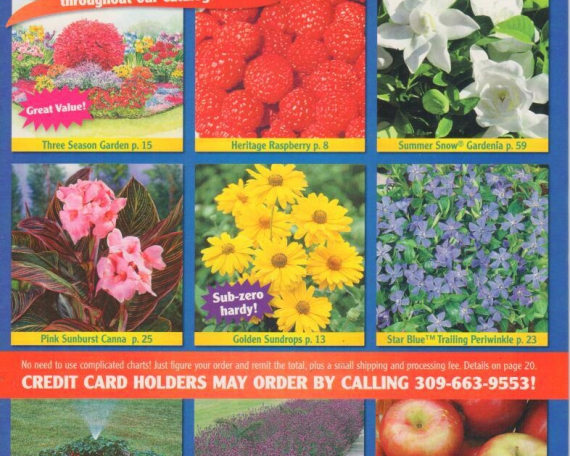 Owen Gardening Catalog Blow Ins